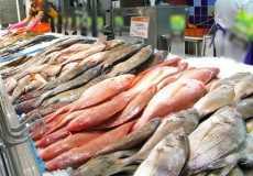Ботулизм в рыбе: причины и симптомы заражения