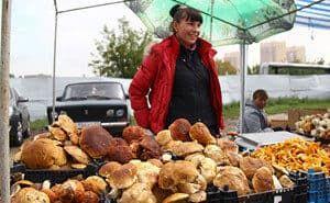 Торговля грибами