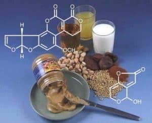 Экзотоксины в пище