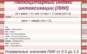 Лейкоцитарный индекс интоксикации