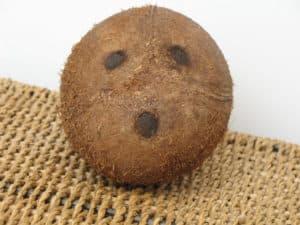 Целый кокосовый орех
