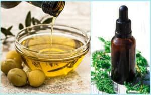Оливковое и пихтовое масло