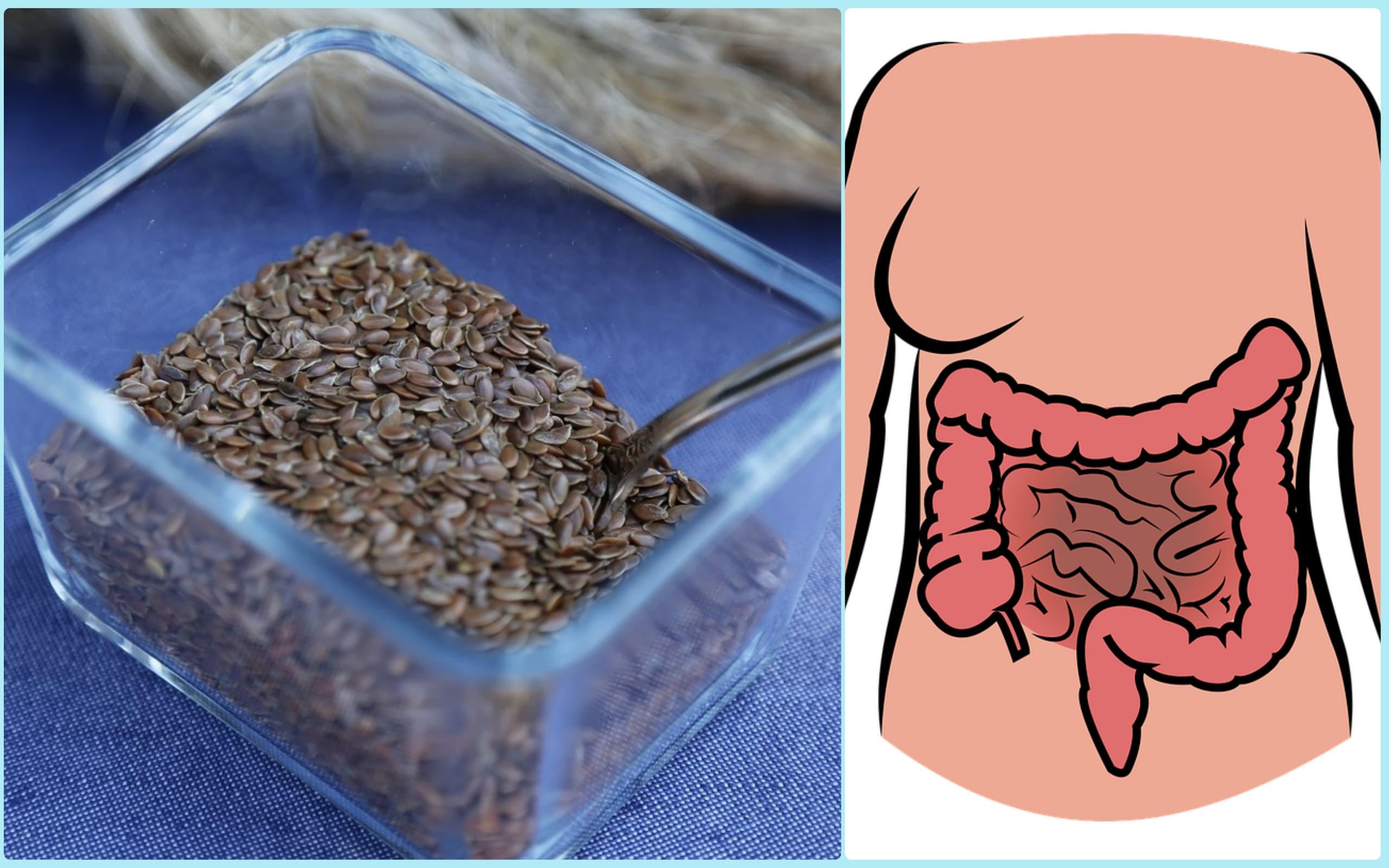 семена льна очистка кишечника с кефиром
